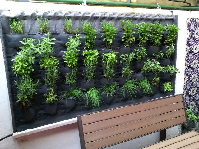 jard n vertical de hierbas arom ticas hidrocultivos del